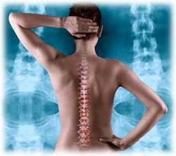 Chiropractic - Nerves vs Bones
